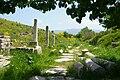 Ephesos06.jpg