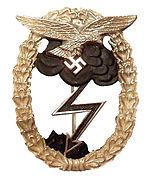 Erdkampfabzeichen der Luftwaffe, de nazi-uitvoering