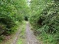 Erkensruhr valley to Gierberg 03.jpg