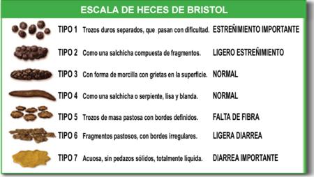 Diarrea del viajero etiologia pdf