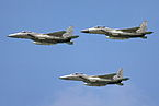 F-15 IAF Israel Independence Day flyover.jpg