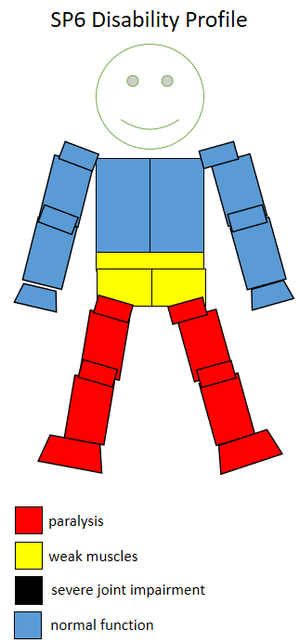 S8 (classification) - Functional profile of a wheelchair sportsperson in the F6 class.