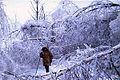 FEMA - 1011 - Photograph by John Ferguson taken on 01-25-1998 in New York.jpg