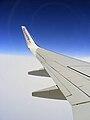 FLYsunwing.jpg