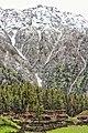 Fairy Meadows, the land of Beauty.jpg