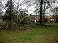 Fallen Oak (wide view) (3386942473).jpg