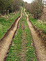 Farm Track - geograph.org.uk - 1804233.jpg