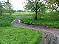 Farm Track to Fields, Killiechronan - geograph.org.uk - 184144.jpg