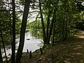 Farmington River Bank And River Road In Nepaug State Forest.jpg