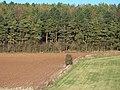 Farmland and woodland - geograph.org.uk - 1632382.jpg