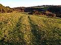Farmland below Apperley Fell - geograph.org.uk - 1544352.jpg