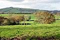 Farmland near Waddeton - geograph.org.uk - 79792.jpg