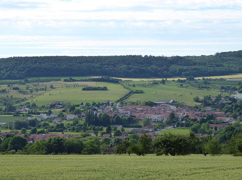 Faulx en Meurthe-et-Moselle (France), vue des hauteurs au sud.