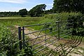 Field gate, Beckheath, New Forest - geograph.org.uk - 463678.jpg