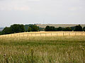 Fields east of Ladle Hill - geograph.org.uk - 666812.jpg