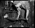 Fireman firing coal burner. PHOTOGRAPHER J.F. Le Cren, F.G. Tingay and R.A.O. Morgan DATE 1953.jpg