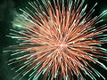 Fireworks Thailand 2006.jpg
