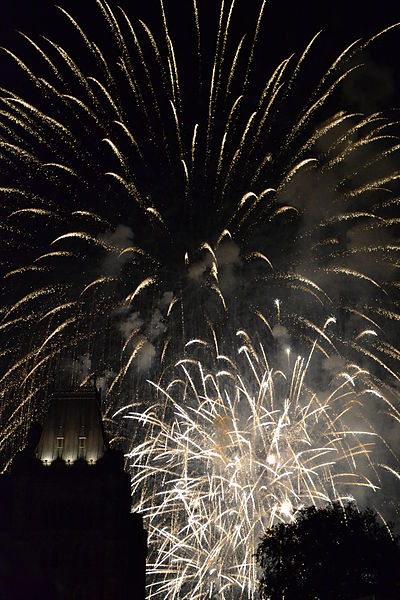 File:Fireworks on Canada DAY.jpg