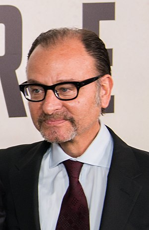 Fisher Stevens - Stevens in 2016