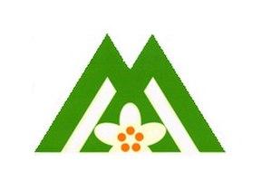 Iizuna, Nagano - Image: Flag of Iizuna Nagano