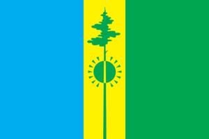 Nizhnekamsk - Image: Flag of Nizhnekamsk rayon (Tatarstan)