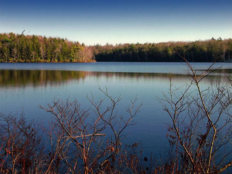 File:Flickr - Nicholas T - Lacawac Sanctuary (2).jpg