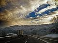 Flickr - Nicholas T - Subdued (1).jpg