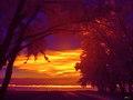 Flickr - paul bica - glow.jpg
