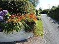 Floral display on Ash Lane, Tavernspite - geograph.org.uk - 521027.jpg