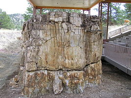 Florissant Fossil Beds National Monument PA272510.jpg