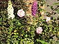 Flowers, Birkenhead - DSC09907.JPG