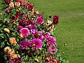 Flowers and Lawn - Agra Fort - Agra - Uttar Pradesh - India (12612751295).jpg