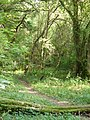 Footpath by Lion's Copse - geograph.org.uk - 242814.jpg