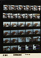 Ford A9841 NLGRF photo contact sheet (1976-05-16)(Gerald Ford Library).jpg
