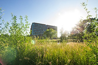 Wageningen University and Research - Summer on Wageningen Campus