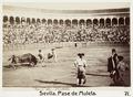 Fotografi av Sevilla. Pase de Muleta - Hallwylska museet - 104817.tif
