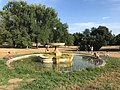Fountain in Villa Doria Pamphilj, Roma, Italia Aug 01, 2021 06-02-50 PM.jpeg