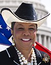 Frederica Wilson official House portrait (cropped).jpg