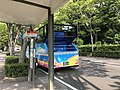 Fukuoka Castle & NHK Broadcast Center Entrance Bus Stop 20170623.jpg