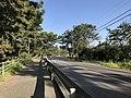 Fukuoka Prefectural Road No.54 near Imazu Pine Grove 2.jpg