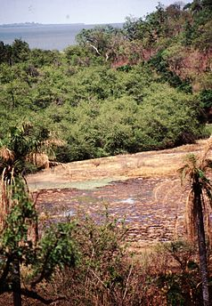Gambia 077 from KG.jpg