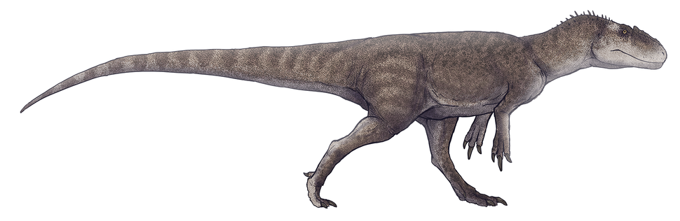 Gasosaurus constructus