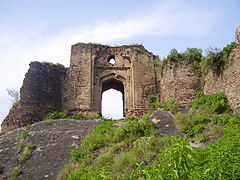 Gate of Pharwala Fort toward the Swaan stream.JPG