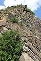 Geotop Steinbruch an der Schanz 13062015 (Foto Hilarmont) (8).JPG