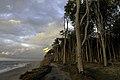 Gespensterwald01.jpg