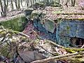 Gesprengter Bunker im Beckinger Wald.jpg