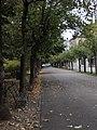 Giardini zumaglini 4.jpg