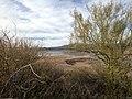Gila County, AZ, USA - panoramio (3).jpg
