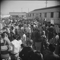 Gila River Relocation Center, Rivers Arizona. Part of the large crowd the witnessed the Harvest Fes . . . - NARA - 538662.tif