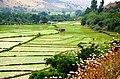 Gilan - Totekabon - panoramio.jpg